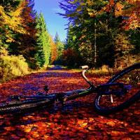 Za podzimní pohodou