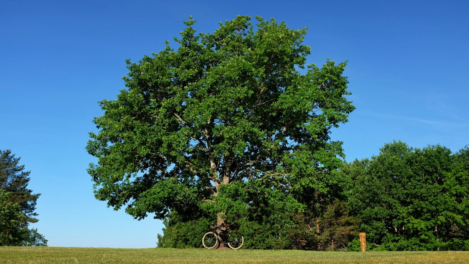 bikepacking litva